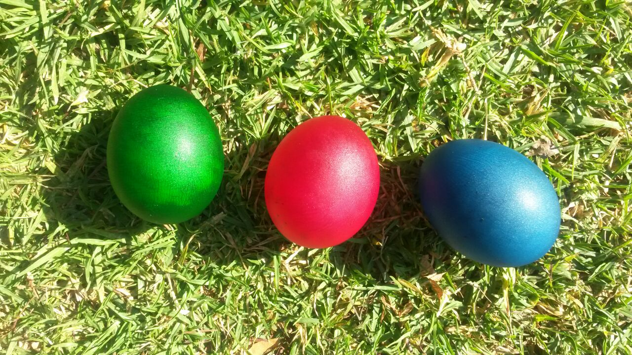 Kids Science - Coloured Eggs