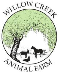 Willow Creek - Animal Farm - Durban